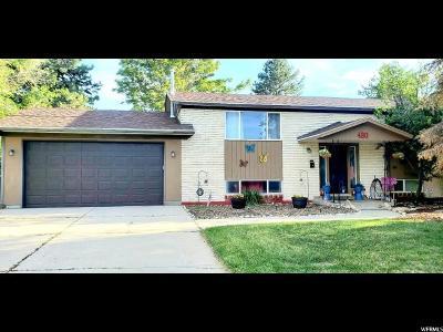Sandy Single Family Home For Sale: 480 E Paty Cir S