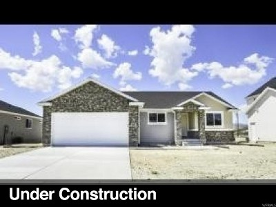 Grantsville Single Family Home Under Contract: 18 S Mustang Ridge Rd #102