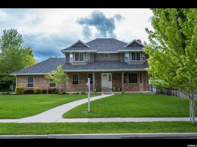 Alpine Single Family Home For Sale: 350 S Alpine Dr E