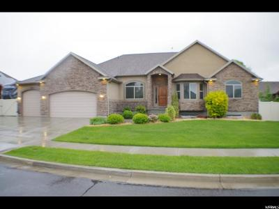 Riverton Single Family Home For Sale: 2952 W Hayden Ridge Way S