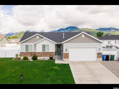 Smithfield Single Family Home Backup: 646 N 130 E