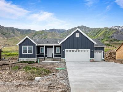 Tooele County Single Family Home Under Contract: 8264 N Iron Horse Dr #707