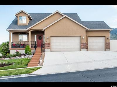 Saratoga Springs Single Family Home For Sale: 247 W Wrangler Ave S