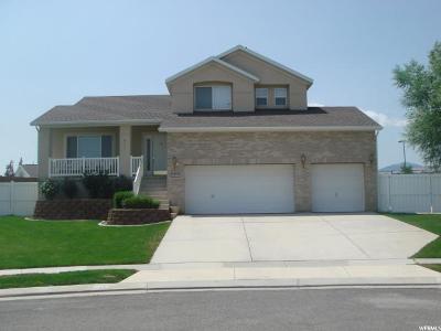West Jordan Single Family Home For Sale: 5337 W Mountain Vis S