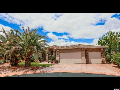 St. George Single Family Home For Sale: 1722 N Sage Cir.