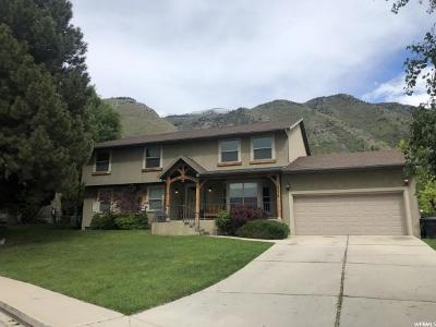 Provo Single Family Home Under Contract: 4036 Quail Ridge Dr #31