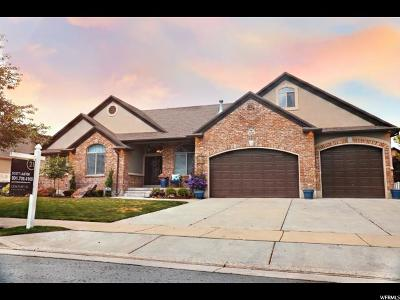 South Jordan Single Family Home Under Contract: 3290 W Spring Day Ln