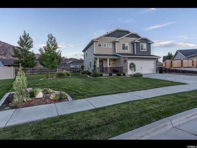 Brigham City Single Family Home Under Contract: 1264 N 600 W