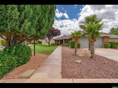 St. George Single Family Home For Sale: 875 W Rio Virgin Dr #288