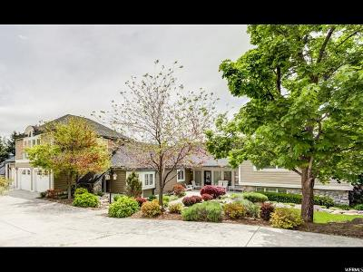Provo Single Family Home For Sale: 2942 N Rolling Knolls Dr