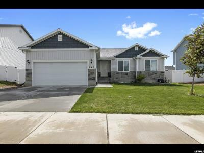 Santaquin Single Family Home For Sale: 843 N 150 W