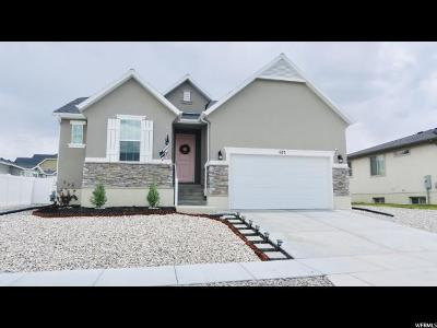 Stansbury Park Single Family Home Under Contract: 675 W Fireside N