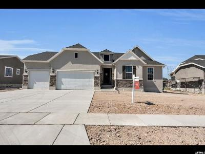 Clinton Single Family Home For Sale: 2399 N Sarus Crane Dr