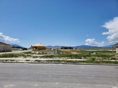 Tooele County Residential Lots & Land For Sale: 736 E Sunset View Rd