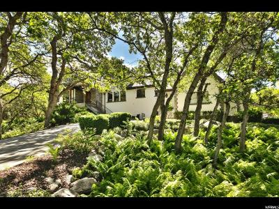 Alpine Single Family Home For Sale: 648 N Coventry Ln