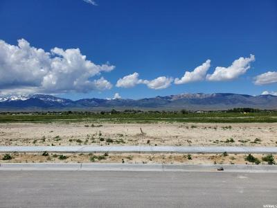 Tooele County Residential Lots & Land For Sale: 656 S Hackamore Rd