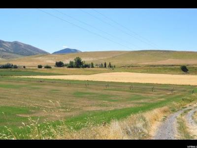 Paradise Residential Lots & Land For Sale: 895 E 8600 S
