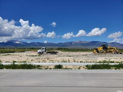 Tooele County Residential Lots & Land For Sale: 688 S Hackamore Rd