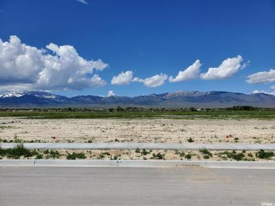 Tooele County Residential Lots & Land For Sale: 668 S Hackamore Rd