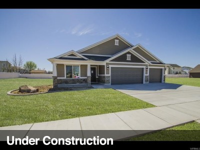 Davis County Single Family Home For Sale: 1916 N 2250 W #308