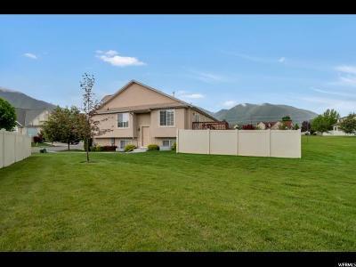 Spanish Fork Single Family Home For Sale: 1196 S 2970 E
