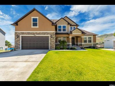 Herriman Single Family Home For Sale: 14103 S Maria Way
