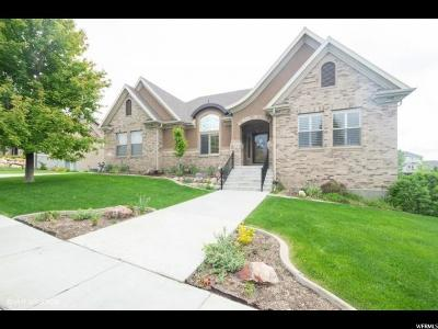 Spanish Fork Single Family Home For Sale: 989 W River Hill Dr