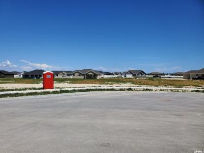 Tooele County Residential Lots & Land For Sale: 731 E Morning Dew Cir