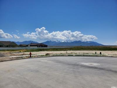 Tooele County Residential Lots & Land For Sale: 744 Morning Dew Cir