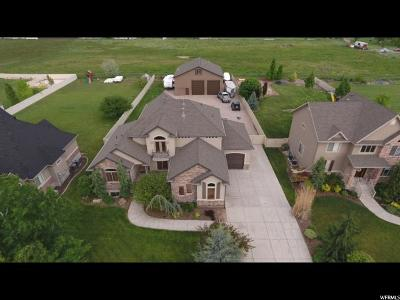 Kaysville Single Family Home For Sale: 1651 Leola St