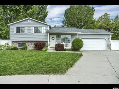 Springville Single Family Home Under Contract: 748 N 150 W