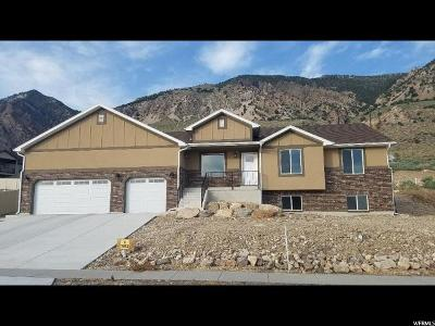 Brigham City Single Family Home For Sale: 1352 N Highland