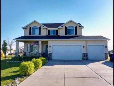 Grantsville Single Family Home For Sale: 249 S Holden Ln