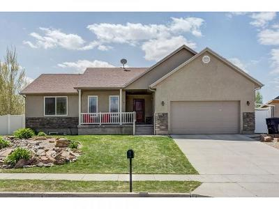 Wasatch County Single Family Home Under Contract: 648 E 600 S