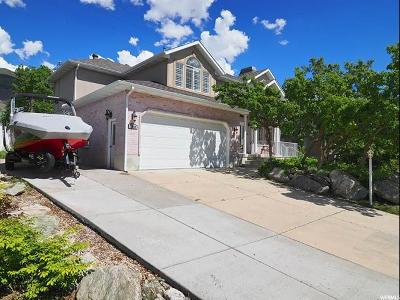 Kaysville Single Family Home For Sale: 1238 N Newport Ln E