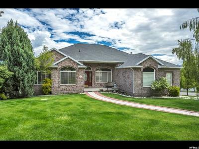 Riverton Single Family Home Backup: 11777 S Whatta View Pl W