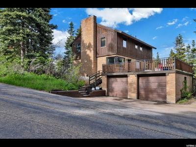 Park City Single Family Home For Sale: 325 Parkview Dr