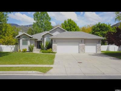 Providence Single Family Home For Sale: 570 Edgehill Dr