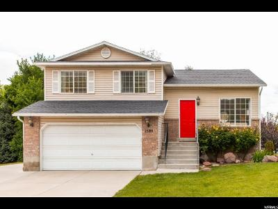 Pleasant Grove Single Family Home For Sale: 1589 N 340 E
