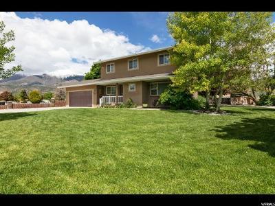 Nephi Single Family Home For Sale: 350 N 400 E
