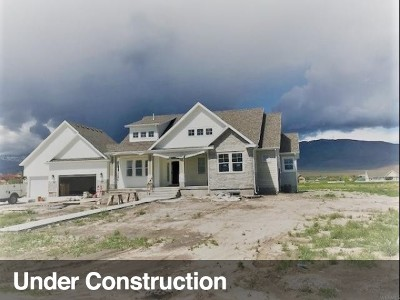 Tooele County Single Family Home Under Contract: 447 N Cooley #103