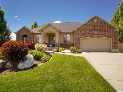 Davis County Single Family Home Backup: 878 W Chester Ln S