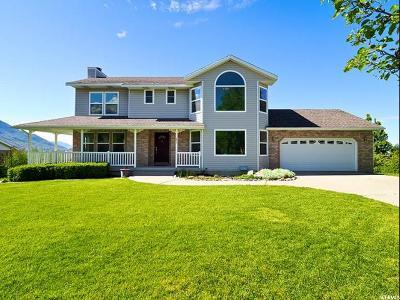 Alpine Single Family Home For Sale: 251 W Hillside Cir N