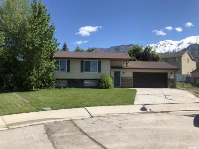 Pleasant Grove Single Family Home For Sale: 605 E 930 S