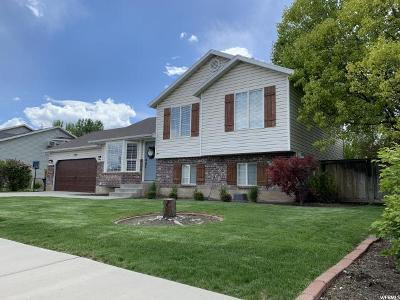Pleasant Grove Single Family Home For Sale: 1495 N 460 W