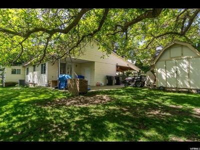 Pleasant View Single Family Home For Sale: 825 W 3950 N