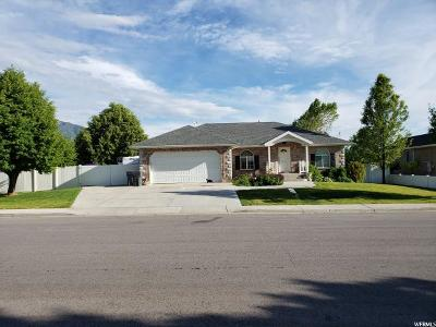 Mapleton Single Family Home For Sale: 1003 W 2000 N