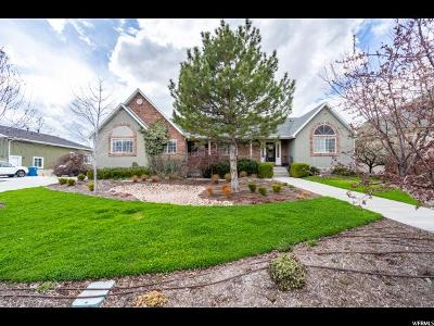Pleasant Grove Single Family Home Under Contract: 2049 N 1210 W