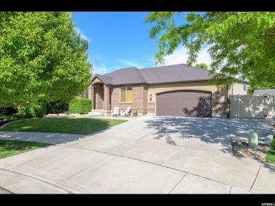 South Jordan Single Family Home Under Contract: 11007 S Cedarhurst Cv