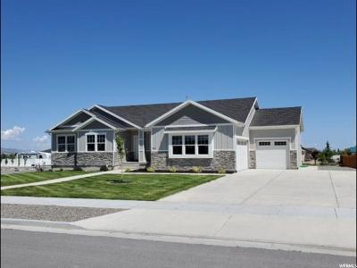 Grantsville Single Family Home Under Contract: 781 E Welles Cannon Rd #604